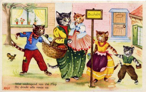 Busstopcats
