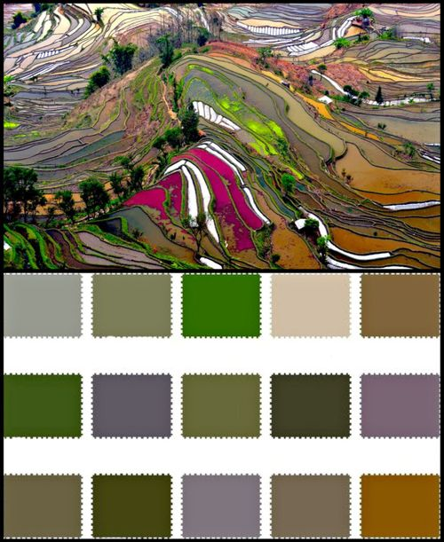 Colorpalette19910