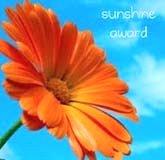 Sunshine Blog Award 041210