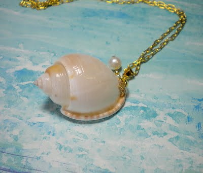 Seashell_necklace_scotch_bonnet_(2)